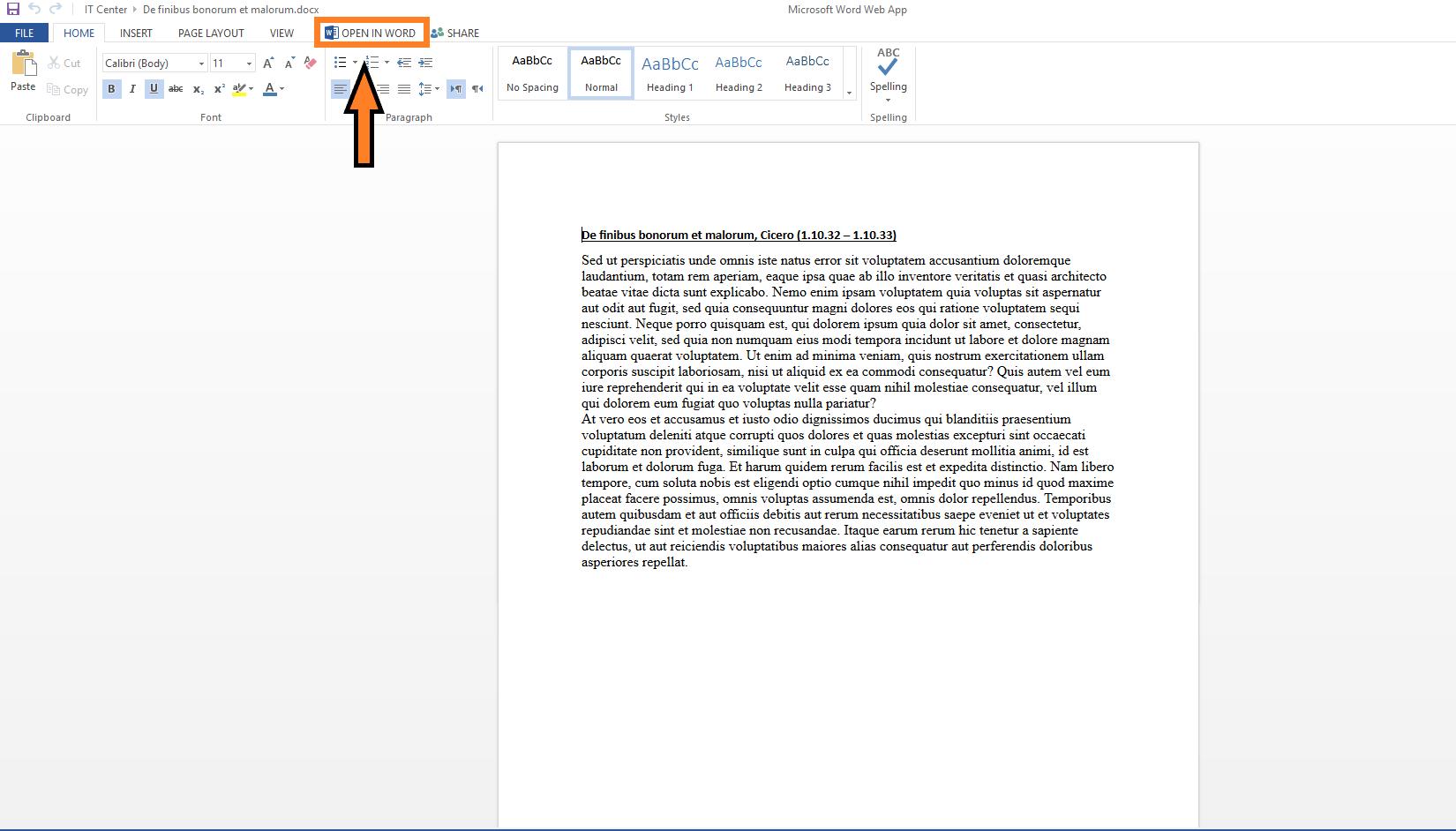 Word Web App editing-view
