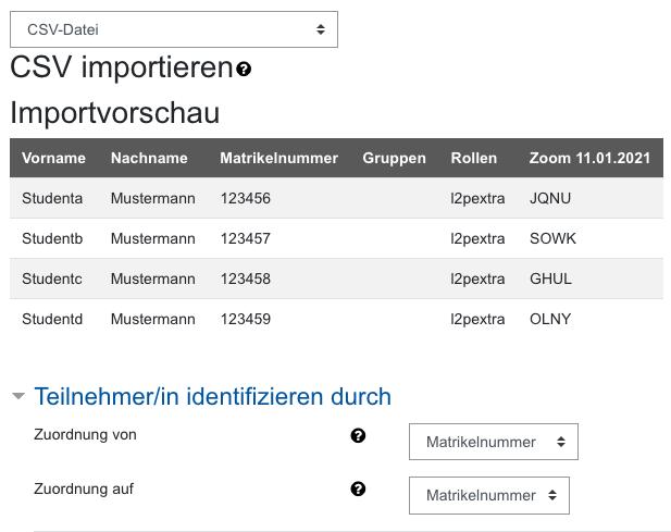 Screenshot Importvorschau