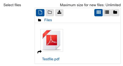 Screenshot selected file