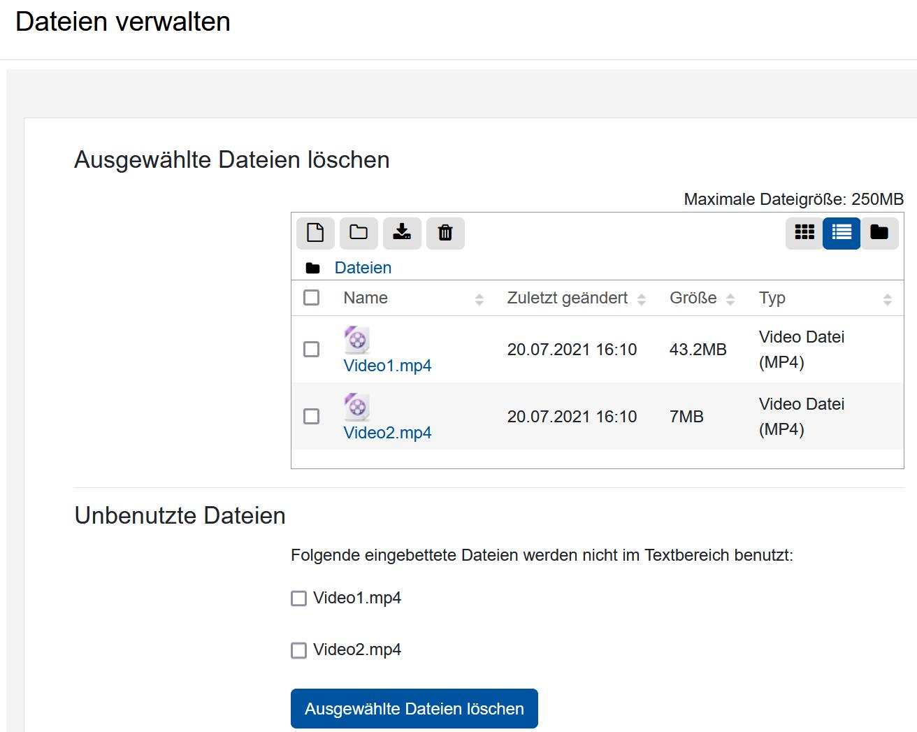 """Screenshot """"Dateien verwalten"""" mit Anzeige der in das Repositorium hochgeladenen Dateien"""