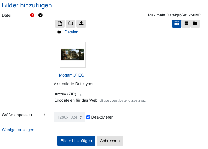 Screenshot Upload-Dialog