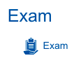 Screenshot of student view on the exam assignment