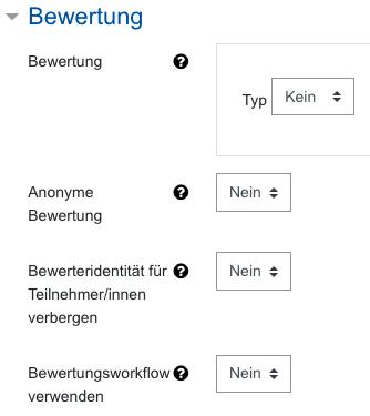 Screenshot Aufgabeneinstellungen, Kategorie Bewertung